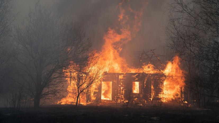 Роспотребнадзор оценил влияние пожаров в чернобыльской зоне на Россию