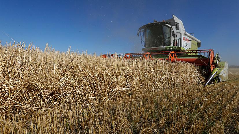 «Преступление против собственной страны»: Зеленский подписал закон об отмене моратория на продажу сельхозземель