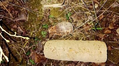 Взрывотехники Росгвардии обследовали боеприпасы времён войны под Севастополем