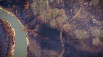 Последствия пожара в чернобыльской зоне отчуждения — видео