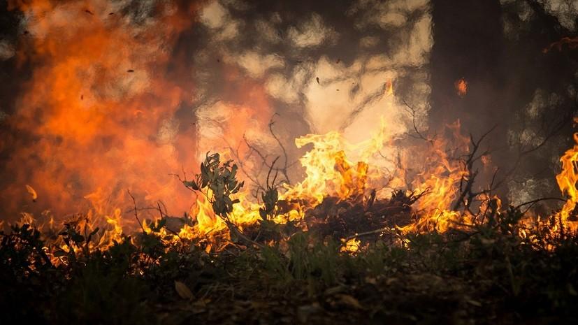 В Курганской области горят почти два гектара дачных построек и травы