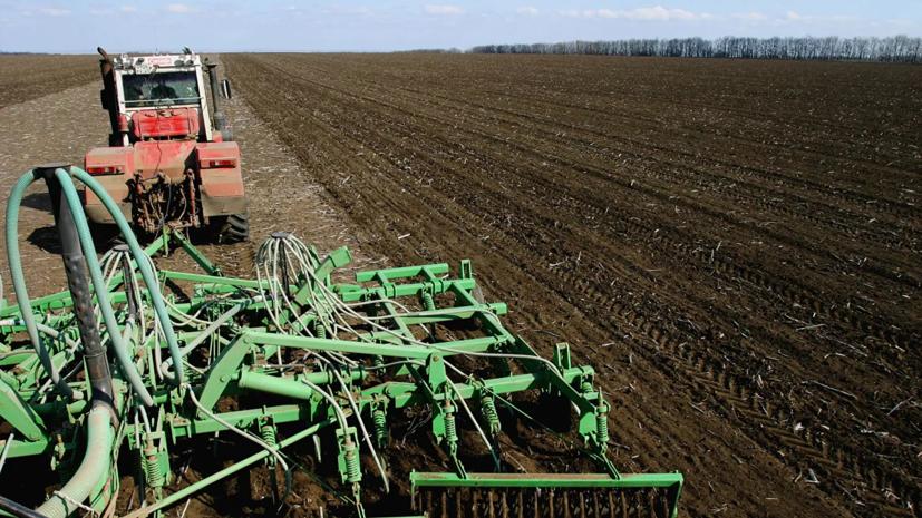 В Ростовской области оценили влияние коронавируса на весенние сельхозработы