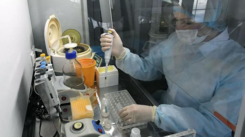 Число случаев коронавируса в Новосибирской области возросло до 876