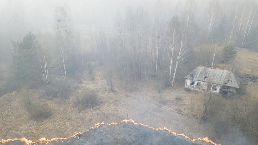 На Украине заявили о сохранении очагов тления в чернобыльской зоне