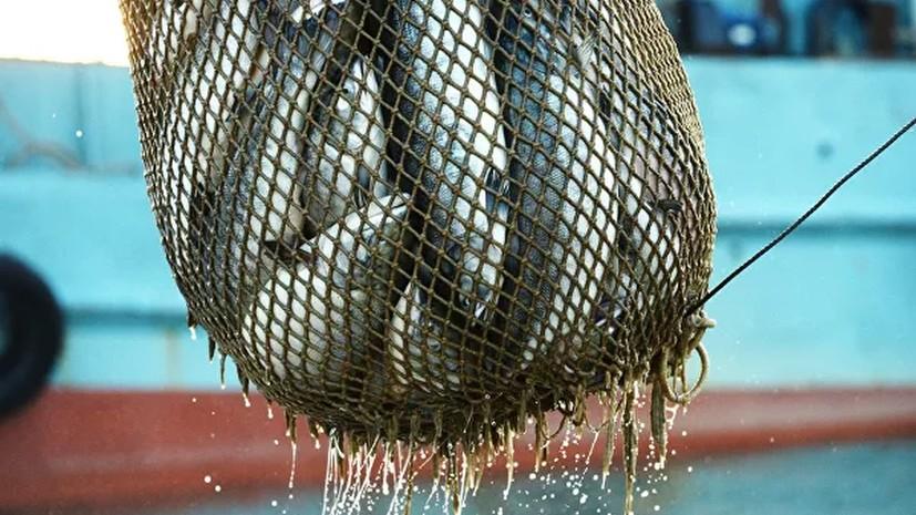 Россия сняла запрет на ввоз живой рыбы из Китая