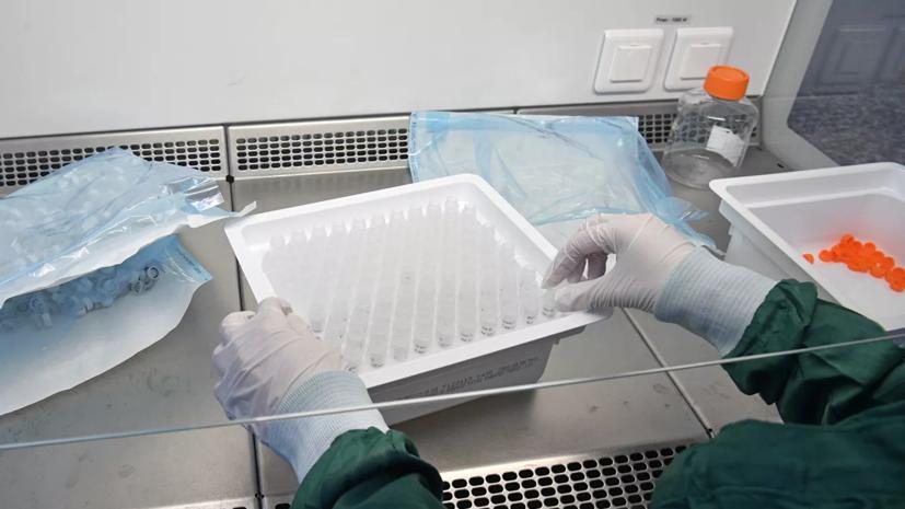 Голикова сообщила о клинических испытаниях препаратов от коронавируса
