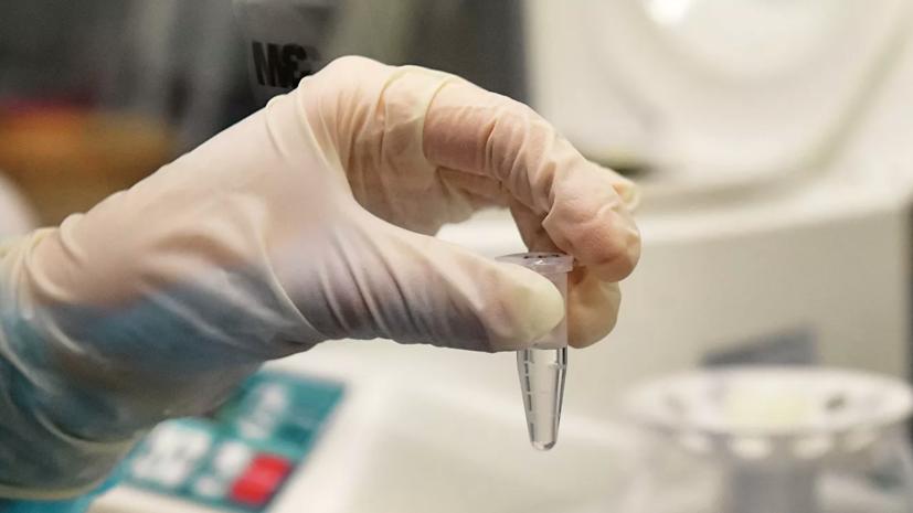 В России провели уже 8 млн тестов на коронавирус