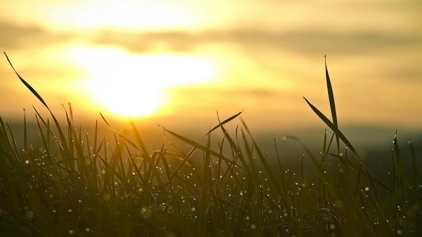 Синоптик дал прогноз погоды на Урале в конце мая