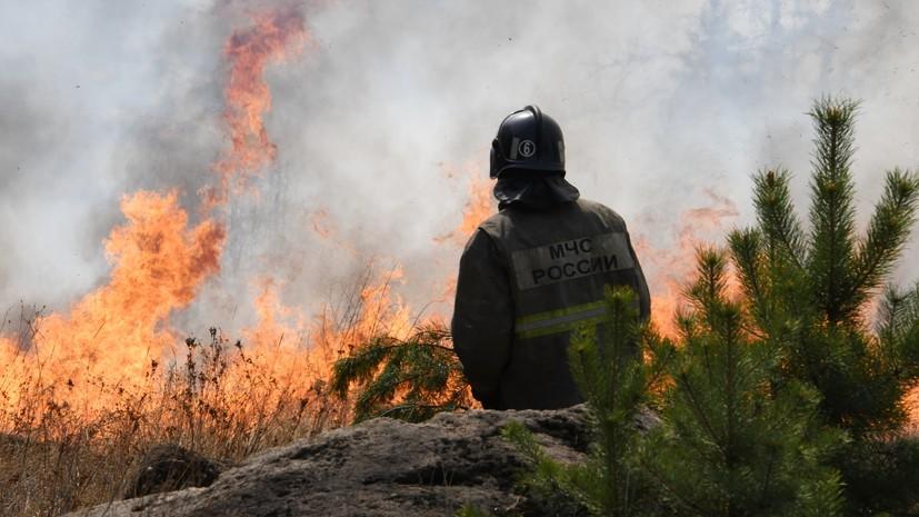 В России за сутки потушено 65 лесных пожаров