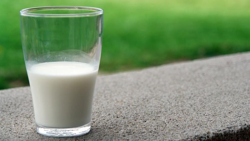 ФАС изучит обоснованность закупочных цен на молоко в России