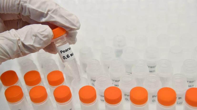 Россия поставит другим странам тест-системы по коронавирусу