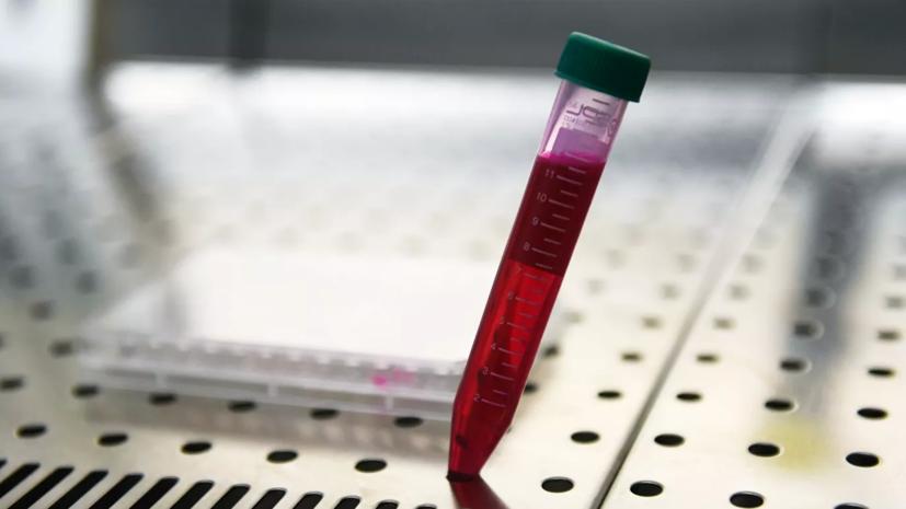 «Вектор» намерен завершить клинические исследования вакцины в сентябре