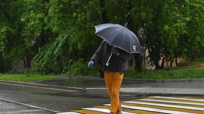 Москвичей предупредили о грозе и ливнях 3 июня