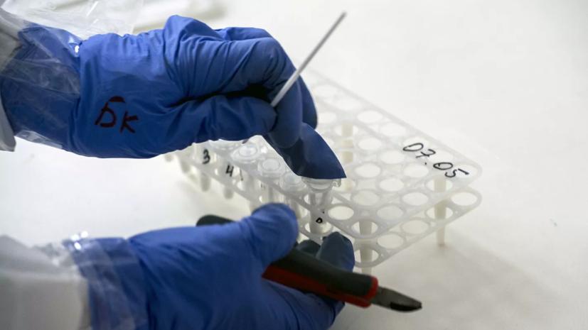 Власти Москвы оплатят тестирование сотрудников компаний на коронавирус