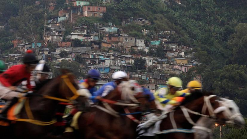 В Венесуэле украли и съели коня, побеждавшего на престижных скачках