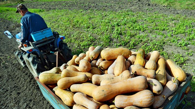 В Оренбургской области рассказали о грантовой поддержке начинающих фермеров
