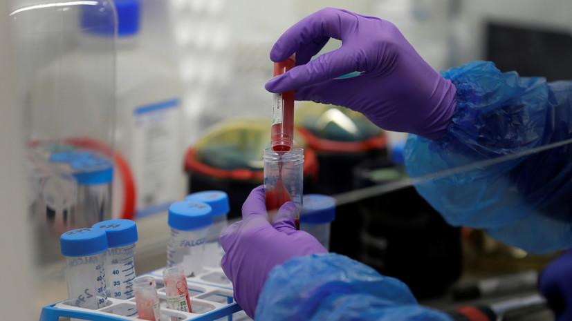 В Нидерландах за сутки выявили 132 новых случая коронавируса
