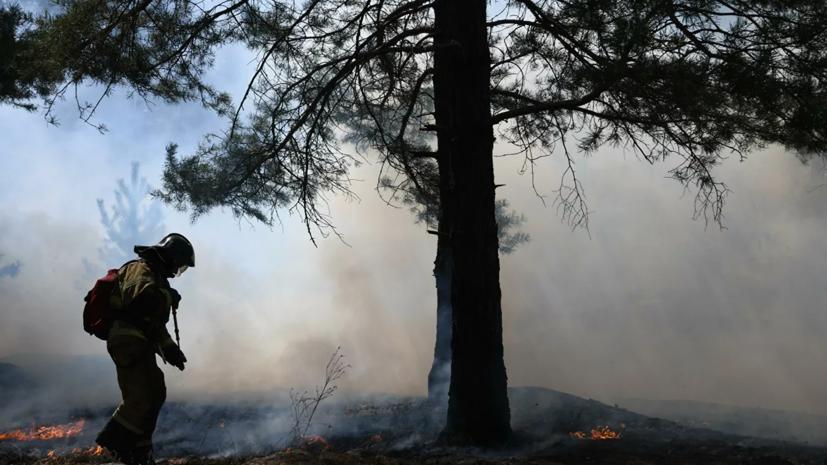 В МЧС рассказали об особом противопожарном режиме в ряде регионов