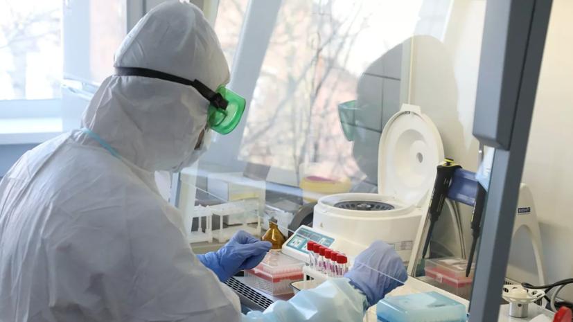 В России за сутки подтверждено 7113 случаев коронавируса