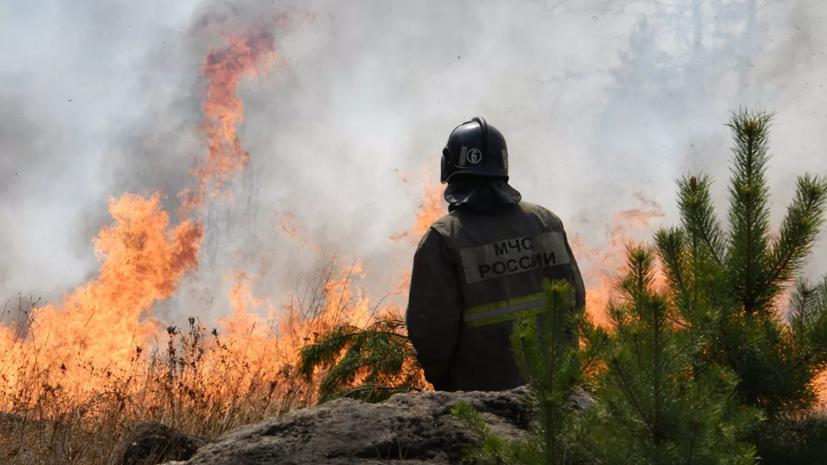Более 150 человек тушат пожар на территории военного полигона в Ленобласти