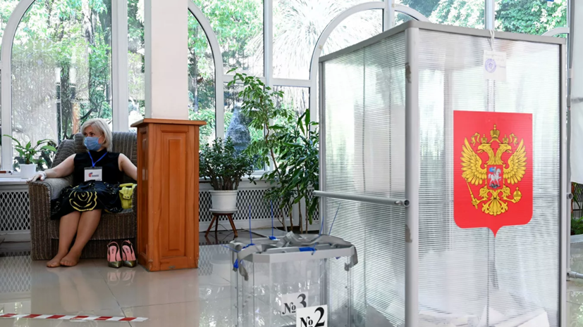 В Общественном штабе сообщили, что выявили создателя фейка о голосовании в Москве