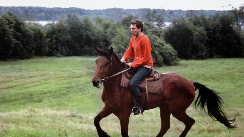 Невзоров поставил под сомнение версию наездницы о допинге, попавшем в организм лошади через сено с мочой