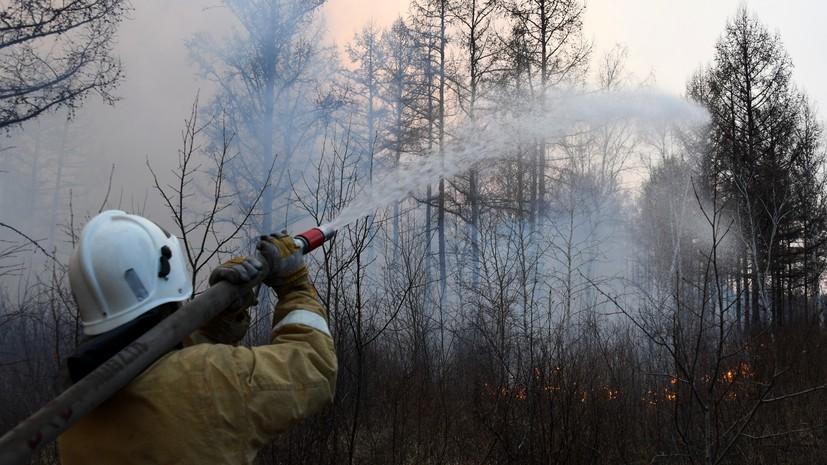 В России за сутки потушили 80 лесных пожаров
