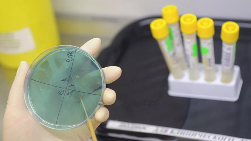 В ВОЗ назвали не новым обнаруженный учёными КНР штамм свиного гриппа