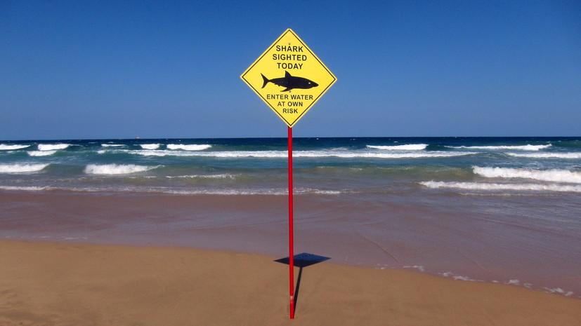 В Австралии мужчину убила акула