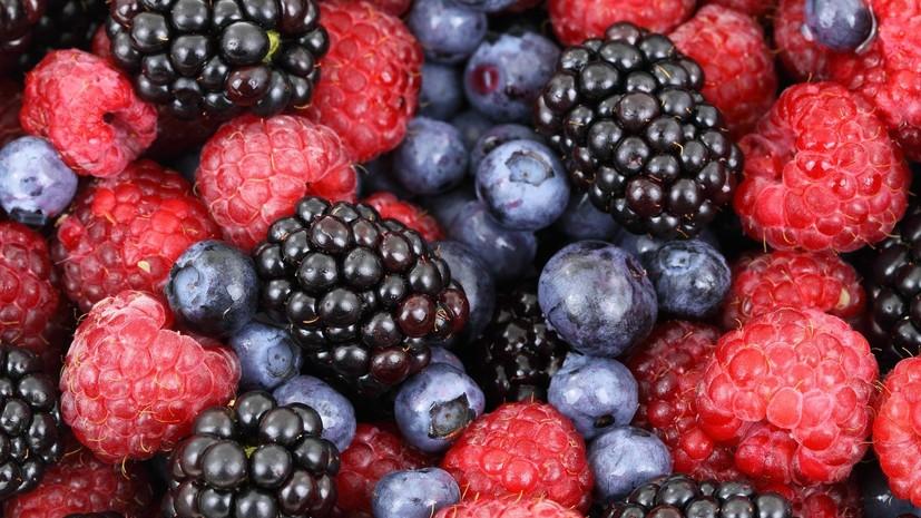 Диетолог оценила пользу от ягод