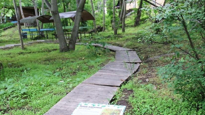 Экотропа «Зелёная Находка» появилась в историческом парке «Пограничная площадь»