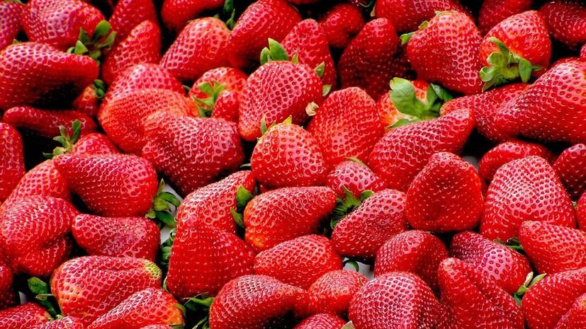 Эксперт оценила вред ягод для детей