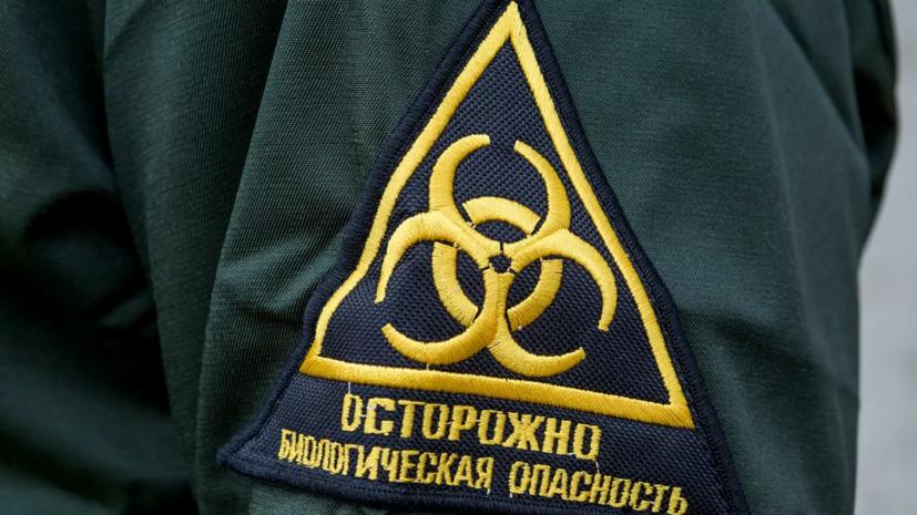 В ВОЗ оценили риск распространения бубонной чумы в России