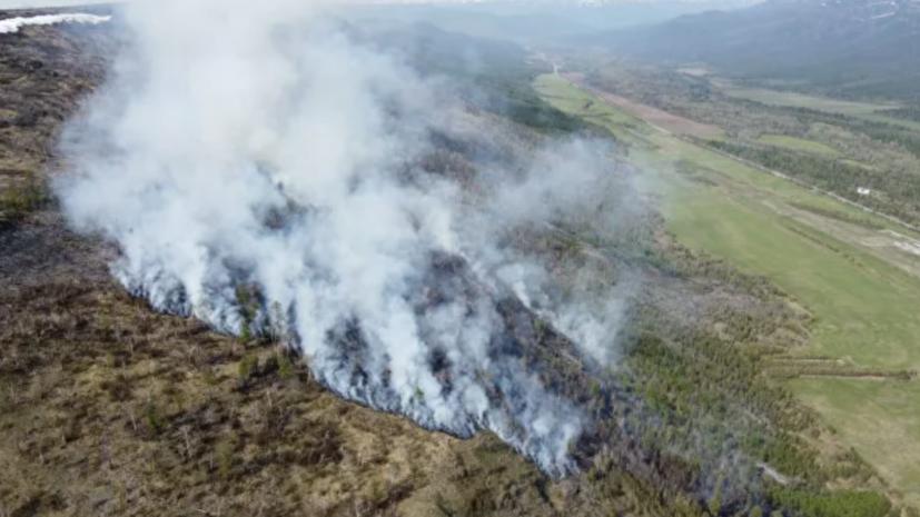 В России за сутки ликвидировали 83 лесных пожара