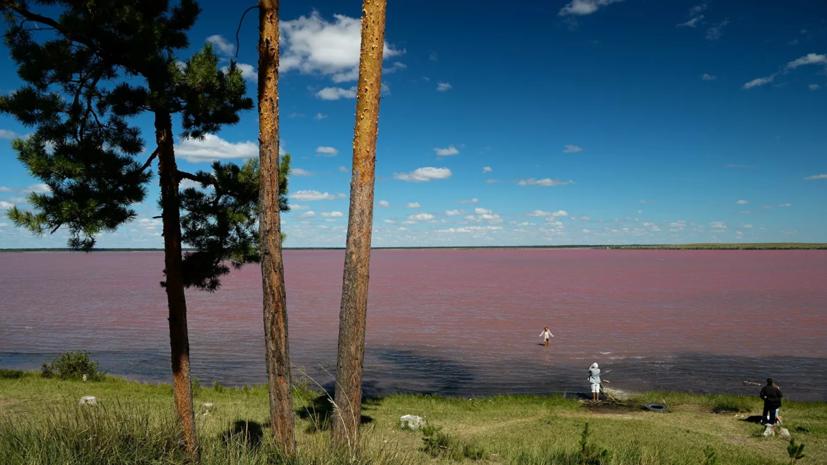 В Алтайском крае ввели режим ЧС из-за засухи