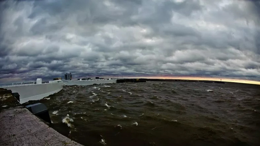 Во время шторма в Петербурге пострадали два человека