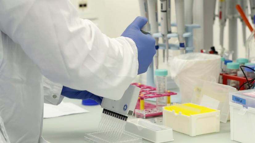 Песков оценил динамику распространения коронавируса в России
