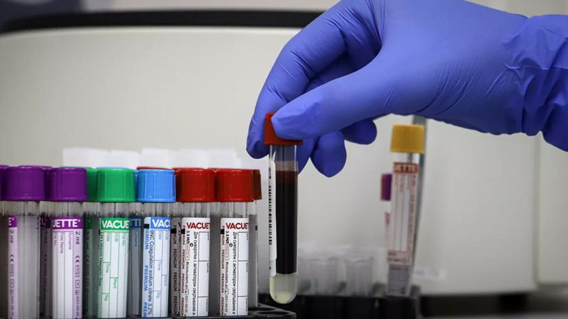 Новосибирские учёные получили нейтрализующие коронавирус антитела