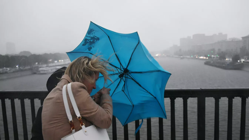 МЧС предупредило о дожде с грозой и сильным ветром в Москве