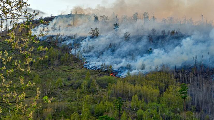 В Башкирии произошёл пожар в заповеднике