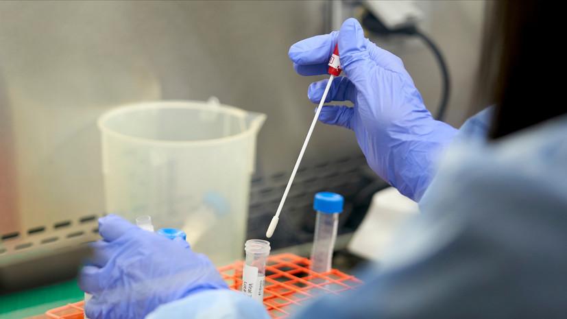 В Киргизии за сутки выявили 1020 новых случаев коронавируса