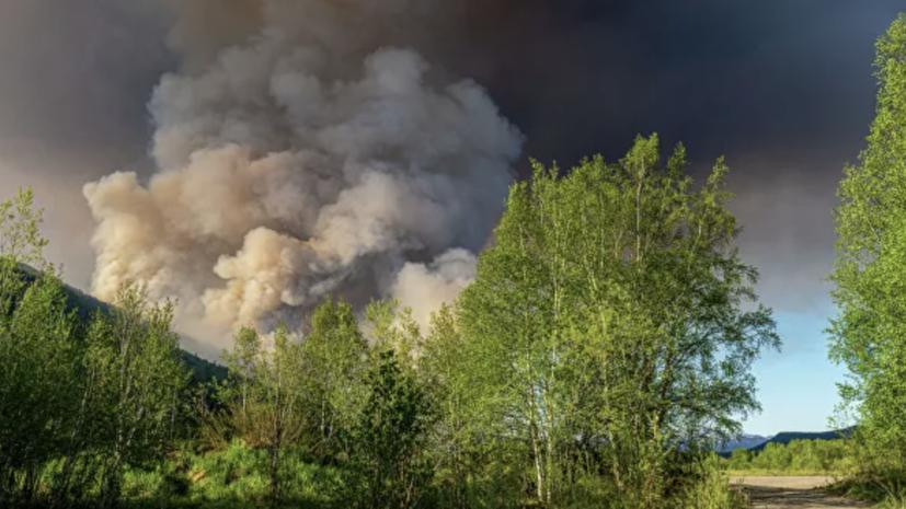 Площадь лесных пожаров в Югре приближается к 30 тысячам га