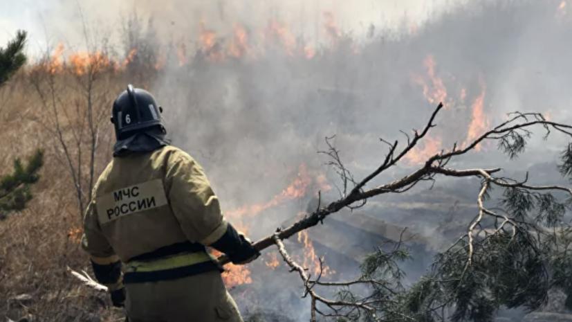 Лесопожарные службы потушили в России 103 пожара за сутки