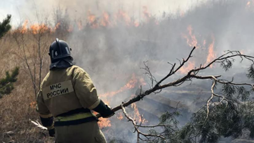 В Башкирии за сутки ликвидировано шесть очагов лесных пожаров