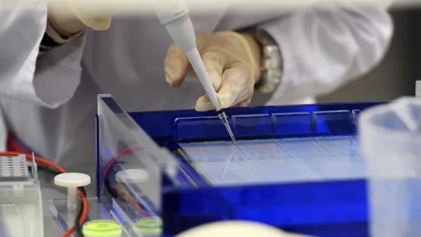 В Сеченовском университете рассказали о вакцине против коронавируса