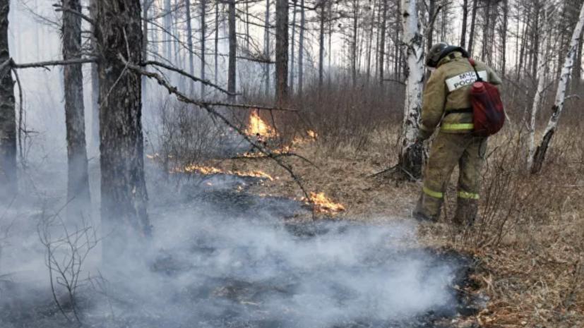 В России ликвидировали 66 природных пожаров за сутки