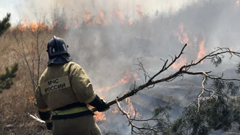 Более 100 человек тушат природный пожар в заповеднике на Урале