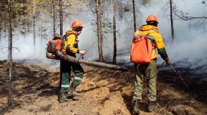 В России потушили 60 природных пожаров за сутки