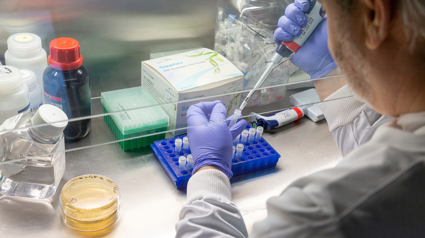 В США за сутки выявили более 67 тысячслучаев коронавируса