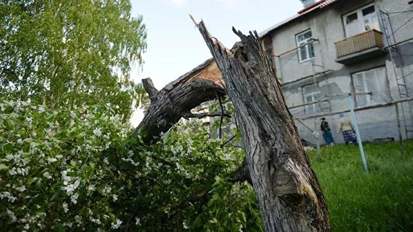 Более 20 автомобилей пострадало в Самаре из-за сильного ветра